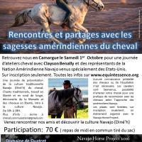 Navajo Horse projet 2016 en  journée
